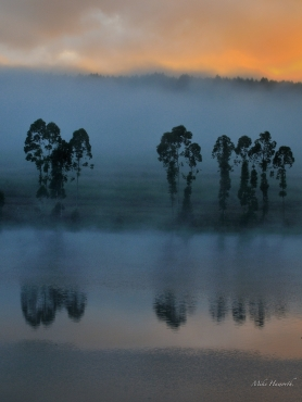 The first light breaking over the mist above Longmere dam at Pine Lake close to White River.