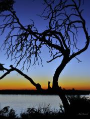 This dead tree at Chobe Marina Lodge made a great silhouette. I should have got lower to emphasise the shape of the tree trunk but I was already lying on my back - I just love the colour shift from the water to the horizon and the deep blue higher up..