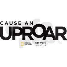 cause an uproar
