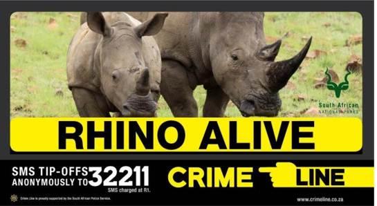 Rhino alive 2