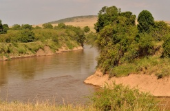 Apparent calm of the Mara river as it snakes its way through the Mara