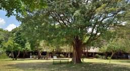 Kitchwa Tembo camp