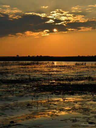 Moody but beautiful scene at sunset on the Chobe river