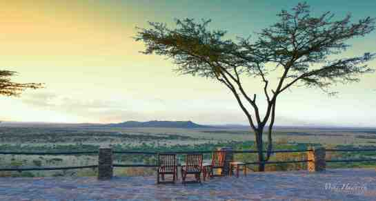 Serengeti Photographic Safari