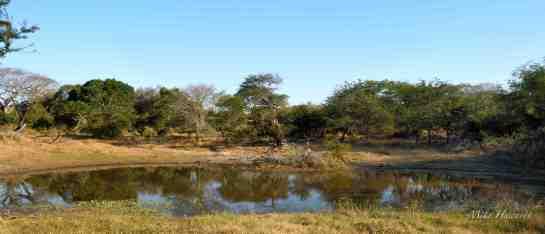 Tembe PM 23-Jun-14 0247