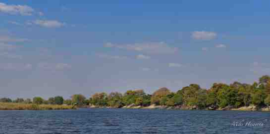 Chobe PM 12-Aug-14 3834
