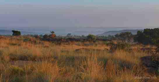 Mashatu,Mpumalanga